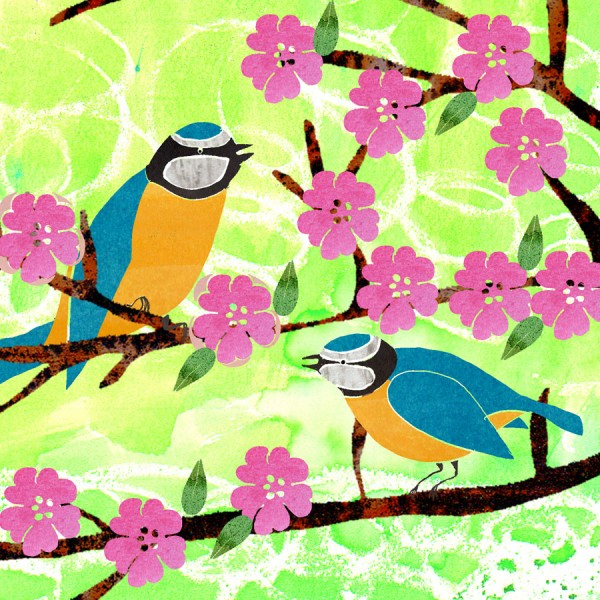 greetings card bluetits