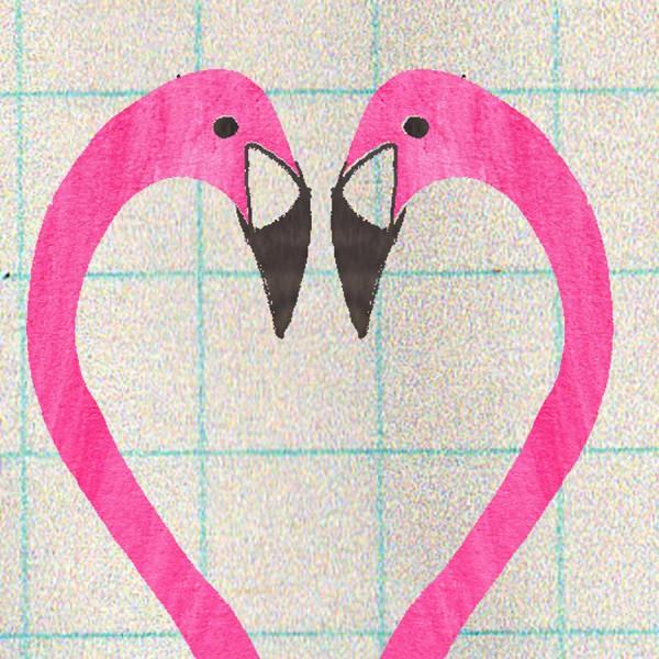 illustrated flamingos card